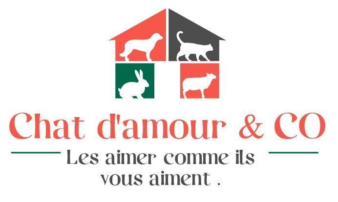 Chat d'amour & C°